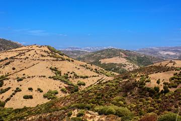 Sardinien Gebirge Bauernhof  Natur