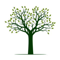 Green Tree with Leaves. Vector Illustration.