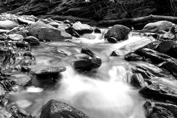 Black and White Slow Shutter Speed Photography of a Small River with Mossy Rocks in the Forest.