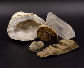 Fossils and Gems on Black Background