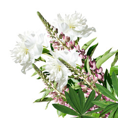 Beautiful floral background lupines and peonies