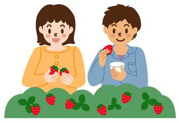 イチゴ狩りを楽しむ子供たち