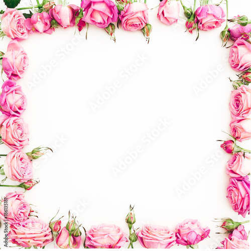 quotflower border frame of pink roses on white background