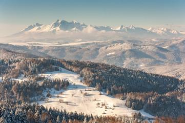 Fototapeta Zima w Beskidzie Sądeckim ,szlak turystyczny z Jaworzyny Krynickiej do Bacówki nad Wierchomlą