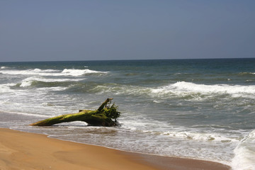 Strand und Küste am indischen Ozean