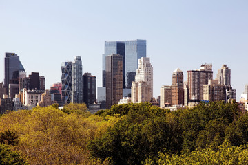 A view of NYC skyline from central park