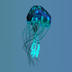 Blue Green Jellyfish - The ocean jellyfish searches for fish prey and uses its poisonous tentacles to subdue the animals it hunts.