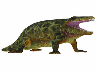 Eryops Dinosaur Side Profile - Eryops was an semi-aquatic ambush predator much like the modern crocodile and lived in Texas, New Mexico and the Eastern USA in the Permian Period.