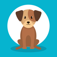 cute dog isolated icon vector illustration design