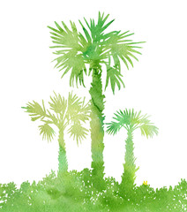 watercolor landscape with palm trees