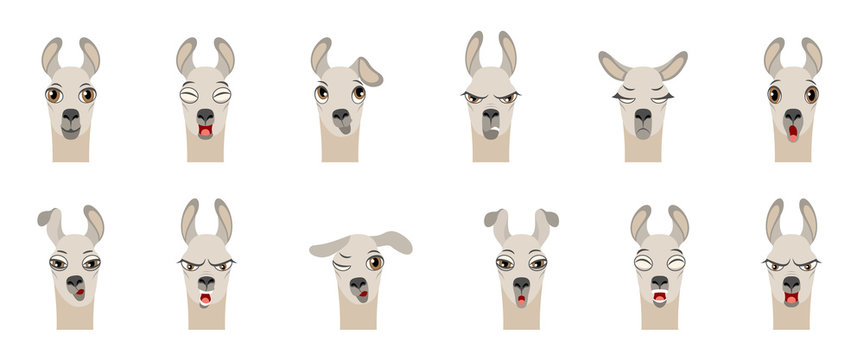 Heads of Lama with Different Emotions - Smiling, Sad, Anger, Aggression, Drowsiness, Fatigue, Malice, Surprise, Fear