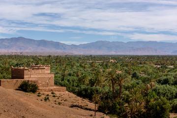 The palmeriaie (oasis) of Skoura