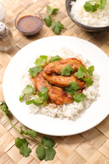 chicken teriyaki and rice