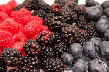 Raspberries Blackberries and Blueberries 14