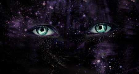 Eyes of Universe