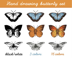 Hand drawing butterflies set icons. Vector illustration.