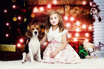 little girl gently hugs the beagle puppy