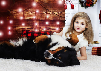 little girl and Bernese Mountain Dog