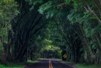 The green gateway