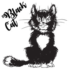 Vector outline. Black cat isolated on white background. Cute black cat.