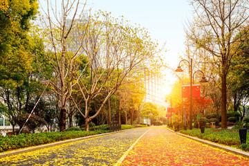 Shanghai's pedestrian walkway