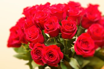 bouquet of red roses, valentine´s day