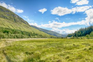 Scottish Landscape 13