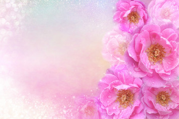 beautiful romantic pink roses flower border on soft glitter background for valentine or wedding card in pastel tone ,copy space for text