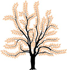 vector image of a tree in spring