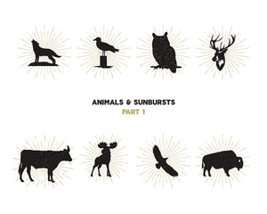 Set of wild animal figures and shapes with sunbursts isolated on white background. Black silhouettes wolf, deer, moose, bison, eagle, seagull, cow, and owl. Use as icons or in logo designs.
