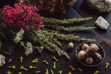 Autumn Collection with Acorns