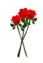 Res roses with green leaves illustration vector