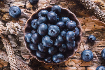 Blueberries on Natural Surface