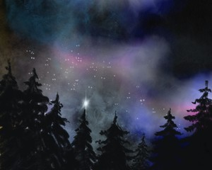 Wald mit Polarlichtern