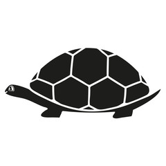 Black turtle icon