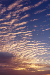Vertical photo amazing morning sky and sunrise. Beautiful landscape with view on abstract yellow red clouds