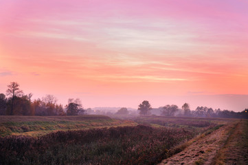 Scenic landscapes of agricultural meadow in dusk light.
