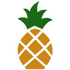 Raw pineapple vector