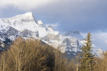 Majestic snow-capped mountain peak under partial cloud sky. Winter trees in foreground.