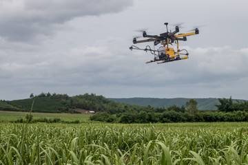 agriculture drone fly on sky and farm field