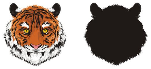 tiger, wild cat, cat, striped, animal, zoo, predator, claws, orange, roar, India, illustration, muzzle, two, different