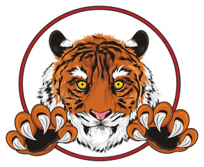 tiger, wild cat, cat, striped, animal, zoo, predator, claws, orange, roar, India, illustration, muzzle, paws, peek up, red, sign