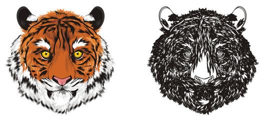 tiger, wild cat, cat, striped, animal, zoo, predator, claws, orange, roar, India, illustration, muzzle, two, different, coloring
