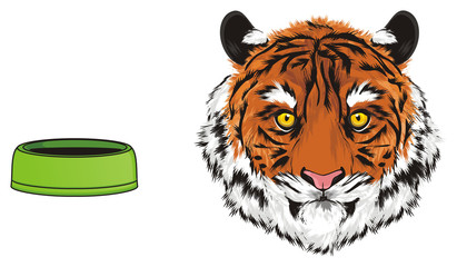 tiger, wild cat, cat, striped, animal, zoo, predator, claws, orange, roar, India, illustration, muzzle, empty, bowl
