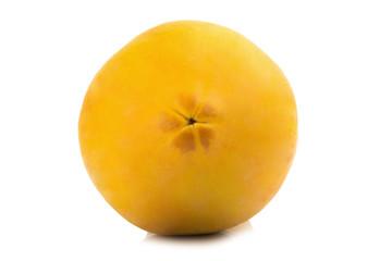 papaya fruit. closeup header. color orange. asian. isolated on white background