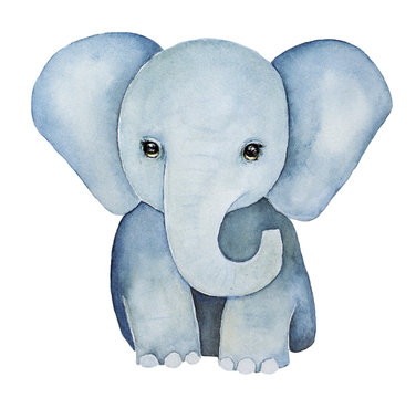 Cute little one, baby elephant painting. Huge ears, lovely eyes, grey blue colours, front view. Baby t-shirt print, childhood element. Hand drawn water color illustration, isolated, white background.
