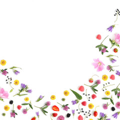 Fototapete - Composition pattern from plants, wild flowers and red berries, isolated on white background, flat lay, top view. The concept of summer, spring, Mother's Day, March 8. Frame of flowers and berries.