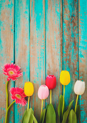 Wall Mural - Colorful flowers on vintage wooden background, top view and border design. vintage color tone - flower of spring or summer background