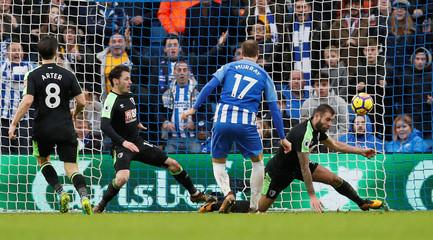 Premier League - Brighton & Hove Albion vs AFC Bournemouth