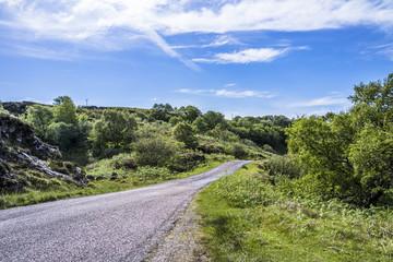 Single track road through the scottish highlands